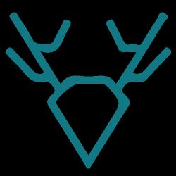 Web Design Wigan